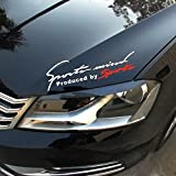 #7: isee360 Racing Auto Hood Bumper Sides Windows Car Sticker Die Cut Water Resistance ,29X9Cm