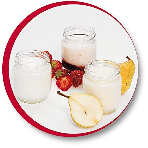 Moulinex Yogurteo YG231E32