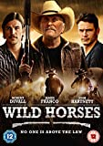 Wild Horses [DVD]