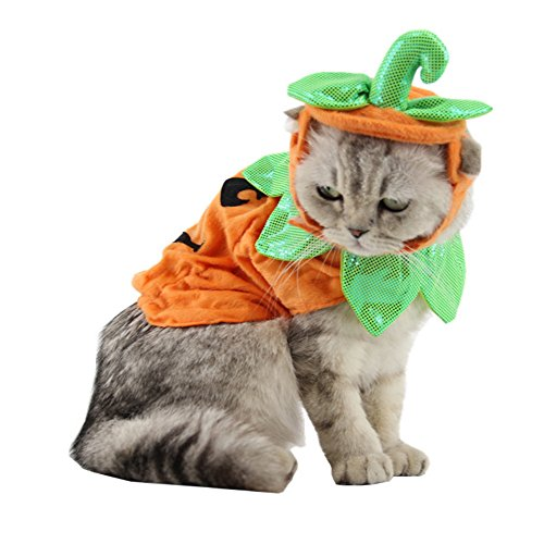 Yunt Halloween Kostüm Hundekostüm Katzenkostüm Kürbis Kostüm Katzen mit Verstellbarem Band aus Plüsch Süßer Schöner Haustierhut Kopfbedeckung Party Fest Kostüm Zubehör