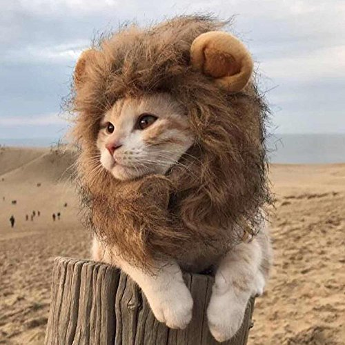 Kakakooo Traje Mane Lion Mascota - Mascota Ropa Peluca