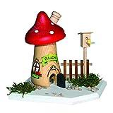 Kuhnert - Bastelset Rauchpilz - aus Holz zum Zusammenbauen - Rauchfigur