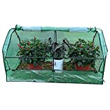 HAIPENG-gewächshaus Treibhaus Foliengewächshaus Tomatenhaus Garten PE Abdeckung Fenster Vent Polycarbonat Pflanze Wachsend Gemüse (Farbe : Green, größe : 180x91x95cm)