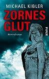 Zornesglut: Kriminalroman (Darmstadt-Krimis, Band 12) - Michael Kibler