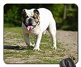 Gaming-Mauspads, Mauspad, Bulldog Pet Cute Snout Portrait Hundeportrait
