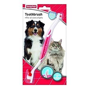 Beaphar tous les chiens de taille Brosse à dents (lot de 6)