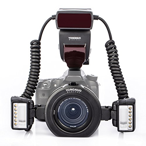 For Sale YONGNUO YN24EX E-TTL Macro Flash Speedlite 5600K with 2Pcs Flash Heads and 4Pcs Adapter Rings for Canon EOS 1Dx 1Ds series 5DIV 6D 7D Cameras Review