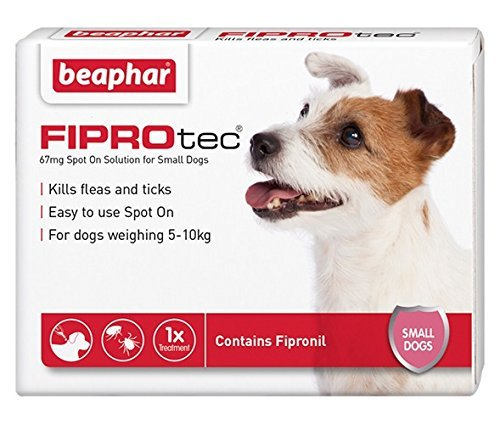 Beaphar-FIPROtec-Kill-Flea-Ticks-Spot-On-Drop-Treatment-Protection-for-Small-Medium-Large-XL-Dogs-Puppies-Cats