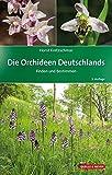 Die Orchideen Deutschlands: Finden und Bestimmen