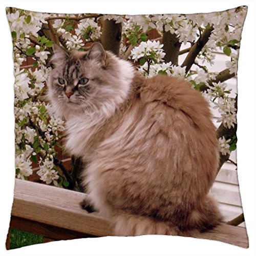 iRocket - Miss Annie - Throw Pillow Cover (24