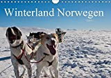 Winterland Norwegen (Wandkalender 2019 DIN A4 quer): Dort, wo man den Winter noch erleben kann. (Geburtstagskalender, 14 Seiten ) (CALVENDO Natur) - Paul Linden