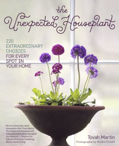 the-unexpected-houseplant-220-extraordinary-choices-for-every-spot-in-your-home