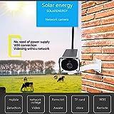 Balscw-J Solar Outdoor IP-Kamera WiFi Wireless Security System Surveillance, IR Night Vision, Fernsicht und Steuerung, Motion Detection und Push Alerts,