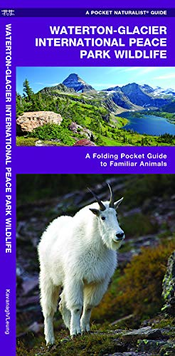 Glacier National Park Wildlife: A Folding Pocket Guide to Familiar Species (Pocket Naturalist Guide Series) (Glacier National Angeln Park)