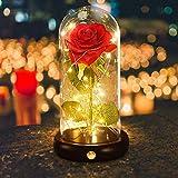 shirylzee Rosa Eterna Kit,La Bella e La Bestia Rose Cupola di Vetro con Base Pino Luci LED Lampada Magici Decorazioni per Fes