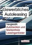 Gewerbliches Autoleasing: Vergleich: Autobanken und Markenfreie Leasinganbieter (Automarkt)