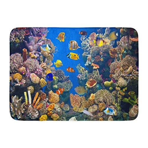LIS HOME Fußmatten Bad Teppiche Outdoor/Indoor Fußmatte Fisch Bunte Aquarium Zeigt Verschiedene Fische Schwimmbecken Unterwasser Badezimmer Dekor Teppich Badematte