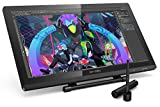 XP-Pen 22 Pro HD IPS Monitor de Dibujo con Soporte Ajustable