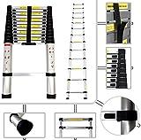 Todeco - Telescopic ladder, Foldable Ladder - Maximum load: 330 lbs - Standard/Certification: EN131 - 12.5 feet, EN 131