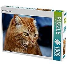 Stubentiger Felix 1000 Teile Puzzle quer: Felix und Raspel sind zwei befreundete Kater, die eine außergewöhnliche Freundschaft verbindet. (CALVENDO Tiere)