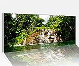Acrylglasbild 100x40cm Wasserfall Wasser Palmen Palme baum Landschaft Wald Acrylbild Acryl Druck Acrylglas Acrylglasbilder 14A9810, Acrylglas Größe1:100cmx40cm