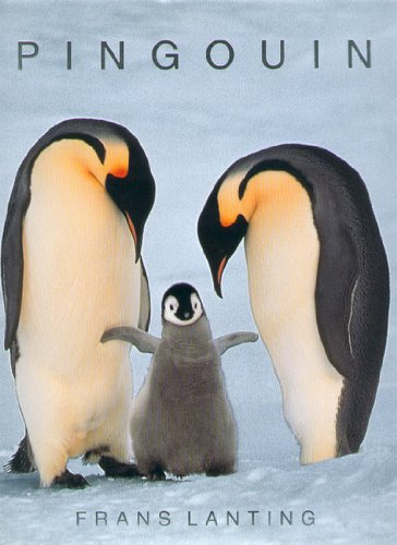 Pingouin par Frans Lanting