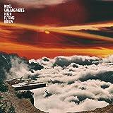 Noel High Flying Birds Gallagher'S: It'S a Beautiful World [Vinyl Maxi-Single] (Vinyl)