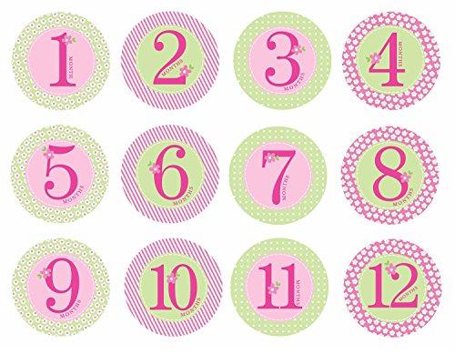Pearhead P60031 - Autoadhesivos barriguita, color rosa