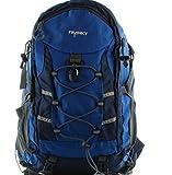 Franky RS Rucksack mit Laptopfach 48 cm blau/grau