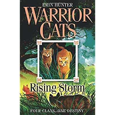 Rising Storm: Four Clans. One Destiny. (Warrior Cats, Book 4) [Lingua Inglese]