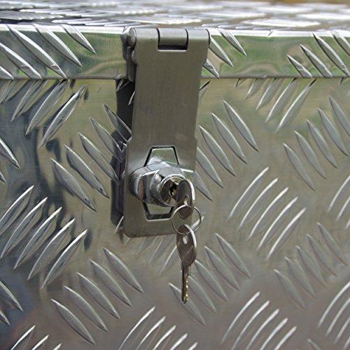 Truckbox D050 +MON2012 Werkzeugkasten, Deichselbox, Transportbox - 8