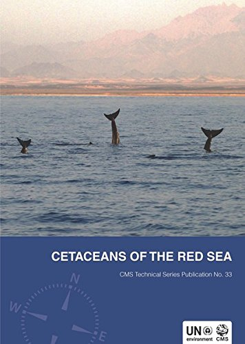 Cetaceans of the Red Sea (CMS Technical Series)