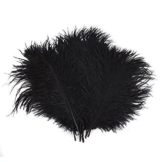 TININNA Naturel Plume Décoration - Idéal Pour Costumes, Chapeaux, Décoration d'intérieur Fete Mariage Anniversaire les Créations d'animaux à Plumes Noir 50 Pieces
