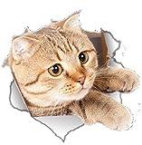 EROSPA® 3D Katze / Cat Wand-Aufkleber Fenster Wandtattoo - Sticker - Wohndeko - 22 x 21 cm