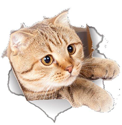 EROSPA® 3D Katze/Cat Wand-Aufkleber Fenster Wandtattoo - Sticker - Wohndeko - 22 x 21 cm