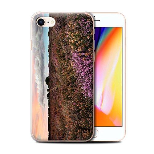 Stuff4 Hülle / Case für Apple iPhone 8 / Sonnenblume Muster / Britisch Landschaft Kollektion Lila Feld