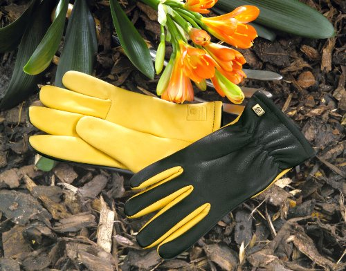 gold-leaf-ladies-dry-touch-gardening-gloves