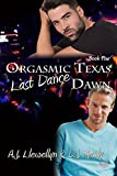 Last Dance (Orgasmic Texas Dawn Book 4)