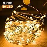 GlobaLink 3M 30 LED Lichterkette mit Batterie 8 Modi Wasserdicht Kupferdraht Lichterkette Batterie für Weihnachten Garten Hochzeit Party DIY Dekoration (Warmweiß)