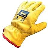 10Paare Himalaya H310Arbeitshandschuhe für Herren aus Leder mit Thermo-Fleecefutter, gelb