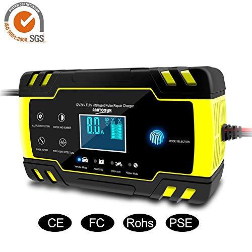AITOCO Cargador batería Inteligente UltraSafe 12V