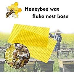 simpyfine 30pcs Excellent Nid de Miel Maison Profonde Abeille Spécial Nid de Cire d'abeille Feuille Abeille Ruche Cadre Outil pour Miel Extracteur Équipement D'Apiculture (Jaune 9x13cm)