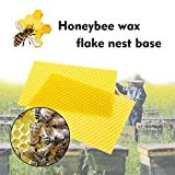 Webla - Honeycomb Bienenwachs Basis Bienenstock Wachsrahmen Bienenwabenrahmen Basisblätter