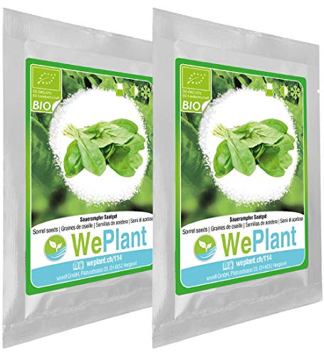 BIO Sauerampfer Pflanzen-Samen Set - indoor/outdoor