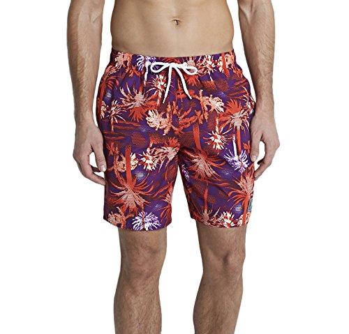 Speedo Male Swimwear Printed Leisure 18