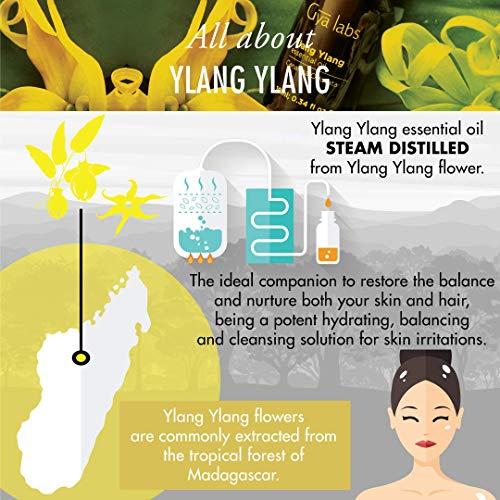 Olio essenziale di vaniglia (Indonesia)–100% puro, biologico, naturale e terapeutico per diffusore...