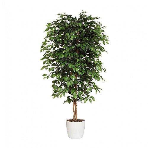 Kunstpflanze Lieferung erfolgt hierbei im neutralen Tontopf