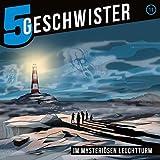 Fünf Geschwister im mysteriösen Leuchtturm (11) (5 Geschwister)