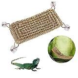 Hamaca Colgante de Lagarto, Hamaca de Reptil, con Techo Plano, para Reptiles, librerías, Reptiles, Reptiles, etc.