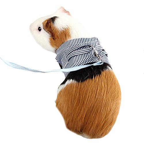 FLAdorepet Guinea Pig Coniglio Cotone Imbracatura e guinzaglio Imbracatura per Piccoli Animali per Tazza da tè